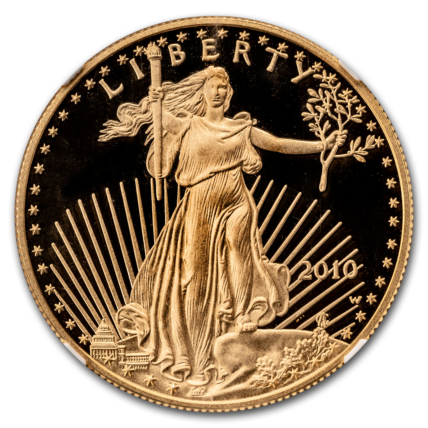 2010-W 1 oz Proof Gold American Eagle PF-70 UCAM NGC